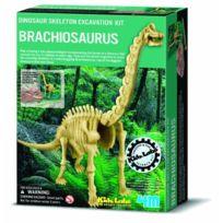 4M - Squelette De Dinosaure : Brachiosaurus