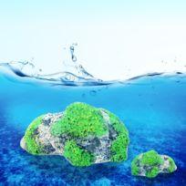 Wewoo - Décoration aquarium Ponce Pierre Suspendue Artificial Fish Tank Acuarios Moss Flying Aquatique Ornement Paysage, Petite Taille: 6,0 x 9,2 cm