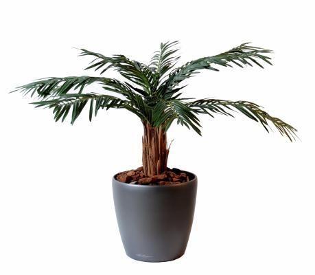Artificielflower palmier artificiel cycas palm plante int rieur cm vert pas cher - Petit palmier d interieur ...