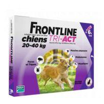Frontline - Pipette Antiparasitaire Tri-Act pour Chien de 20 à 40Kg 6x4ml