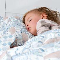 Sevira Kids - Couette et oreiller enfant 2 en 1 prêt à dormir - Sweet Family
