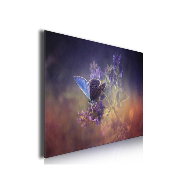 Hexoa Tableau Papillon Bleu et Brin De Lavande, 80x50cm