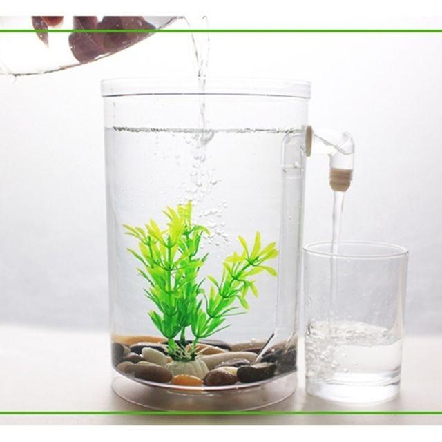 Décoration aquarium Bol de poissons d'or d'aquarium de bureau écologique créatif mini d'or, réservoir d'eau paresseux avec le pavé, herbe d'arbre et