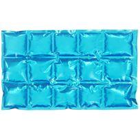 Promobo - Pain De Glace Souple Glaçon Bloc Fraicheur Flexible Pour Glacière Bosse 15 Cubes Bleu