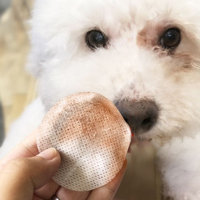 Wewoo Enlèvement de larmes d'animal familier de Pcs / bouteille essuie-tout humide nettoyant le tissu facial de larme