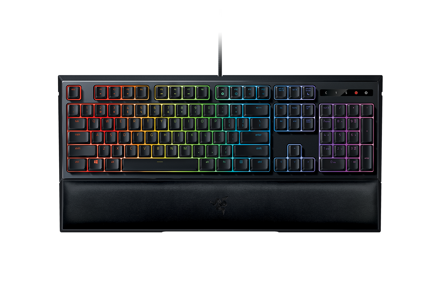 Ornata Chroma