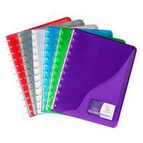 Viquel - Protège-documents Géode polypropylène translucide A4 couleurs assorties - 30 pochettes - Lot de 12