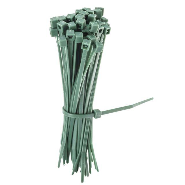 Provence Outillage Liens vert 10cm 50 pièces