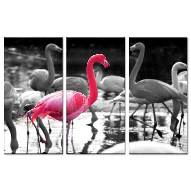 declina triptyque tableau animaux flamants roses photo. Black Bedroom Furniture Sets. Home Design Ideas