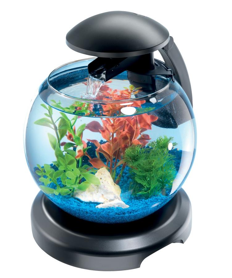 Cascade Globe - Aquarium design équipé de 6,8 L pour poissons d'eau froide - Zolux