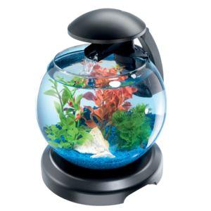Tetra cascade globe aquarium design quip de 6 8 l for Achat aquarium design
