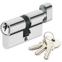 Bricard - Cylindre de serrure à bouton pour porte barillet 30 x 30 mm Alpha 3 clés