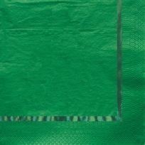 Creative Party - Serviettes Verte x16