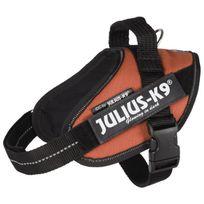 Julius K9 - Julius-k9 Harnais Power Idc - Mini - M : 49-67 cm-22 mm - Orange cuivré - Pour chien