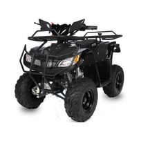 Nitro Motors - Quad 110 hummer noir
