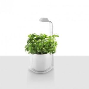 tregren culture sous lampe genie led h44 cm blanc 44cm x 44cm x 21cm pas cher achat. Black Bedroom Furniture Sets. Home Design Ideas