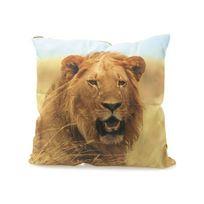 Vincent Larrousse - Coussin Lion 40x40