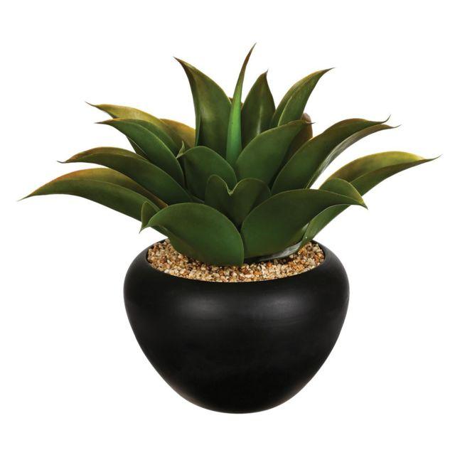 Atmosphera, Createur D'INTERIE Atmosphera - Aloe vera en pot céramique H37