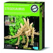 4M - Squelette De Dinosaure : Stegosaurus