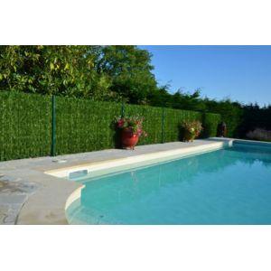euro castor green haie eternelle thuya en brins haut de gamme pas cher achat vente. Black Bedroom Furniture Sets. Home Design Ideas