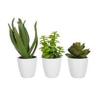 J-line - Set 3 plantes grasses artificielles - 23 cm