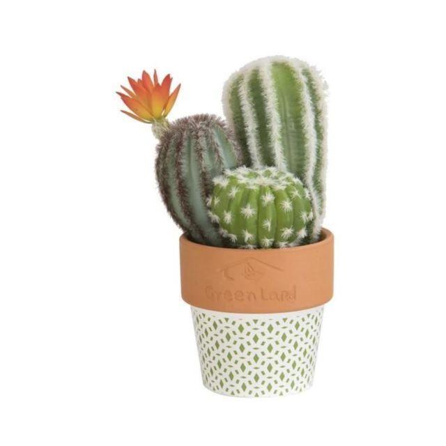 FLEUR-PLANTE ARTIFICIELLE - FLEUR SECHEE Composition de Cactus fleuri - En pot ethnique vert