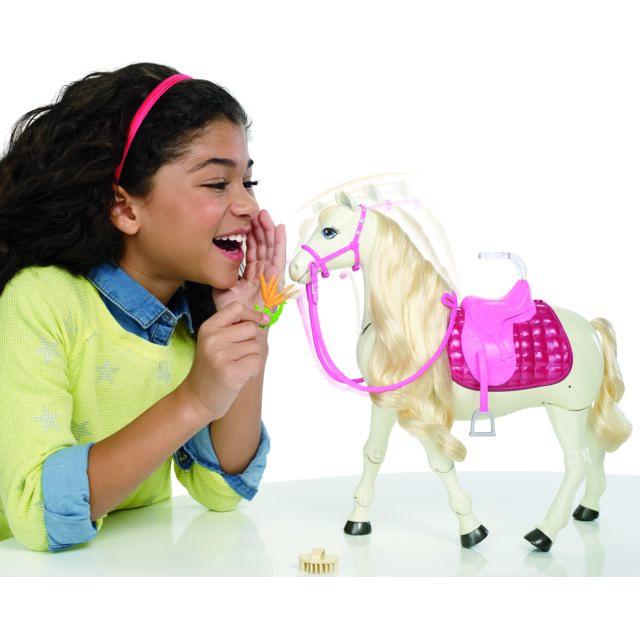 MATTEL - Barbie et son Cheval de Rêve - 0887961463699