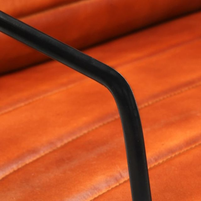 Icaverne - Fauteuils serie Fauteuil Brun roux Cuir véritable