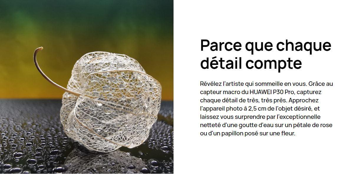13.jpg [MS-15481123719086096-0092865973-FR]/Catalogue produit / Online