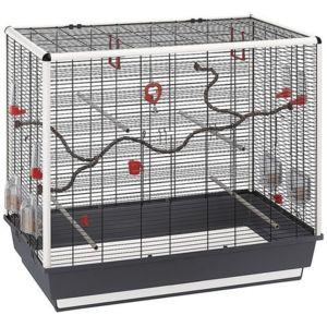 ferplast cage oiseaux piano 7 pas cher achat vente cage oiseaux rueducommerce. Black Bedroom Furniture Sets. Home Design Ideas