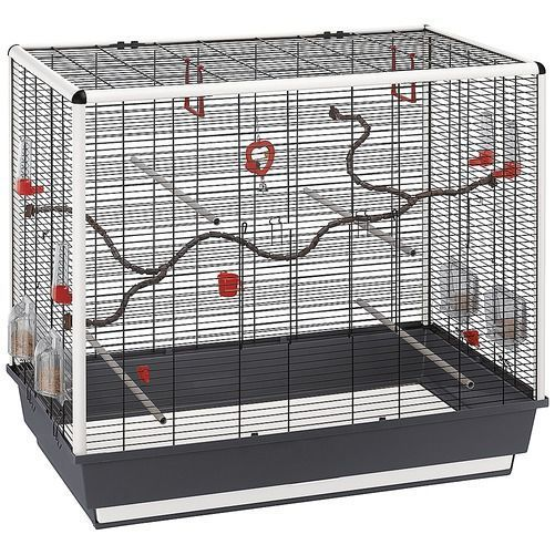 attractive price new high wholesale dealer Cage oiseaux Piano 7