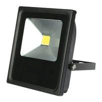 Millumine - Projecteur jardin Led 2100 lumen éclaire 210 W Projo noir conso 30 W