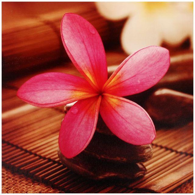 Promobo Tableau Toile Cadre Inspiration Zen Fantaisie Colonne