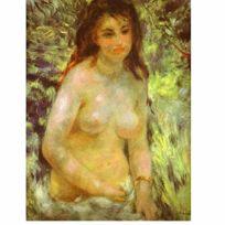 Dtoys - Puzzle 1000 pièces - Renoir : Nu dans le soleil