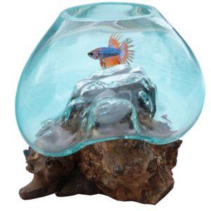 Les animaux de la fee aquarium boule pour combattant sur for Aquarium boule