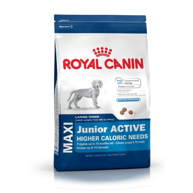 royal canin chien maxi puppy active pas cher achat vente croquettes pour chien rueducommerce. Black Bedroom Furniture Sets. Home Design Ideas