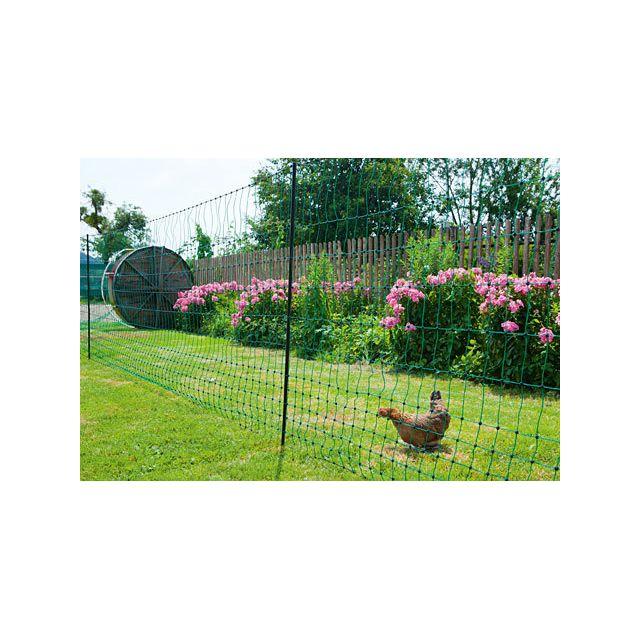 Filet poule 50m Hauteur 1,12m simple pointe PoultryNet