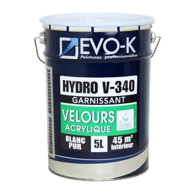Peinture Monocouche Murs Et Plafonds Hydro V340 5 L Blanc Velours