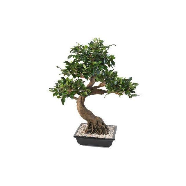 Artificielflower - Bonsaï artificiel arbre miniature Ficus en coupe ...