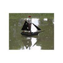 bateau pirate playmobil achat bateau pirate playmobil. Black Bedroom Furniture Sets. Home Design Ideas