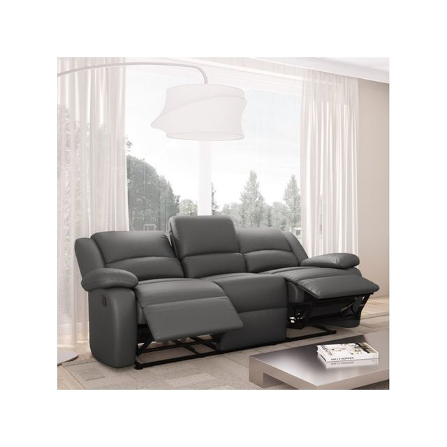 canap cuir gris. Black Bedroom Furniture Sets. Home Design Ideas