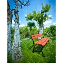 Garden - Banc de jardin en bois couleur acajou et aluminium 150cm