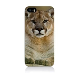 coque iphone 4 animaux