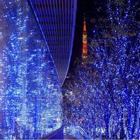 Alpexe - Haute Luminosité, 30M-300 Leds Guirlandes Lumineuses brillent à l'intérieur ou à l'extérieur et créent une atmosphère de bonheur. Efficacité et Economies d'énergie, Source de Lumière Froide, 97% de l'énergie électrique se transforme en én