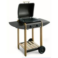 Lekingstore - Barbecue A Gaz Et Pierre Lavique Eurowoody Single L47 x P43 x H83 cm