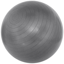 Avento - Ballon d'exercice 65 cm argenté 41VM-ZIL