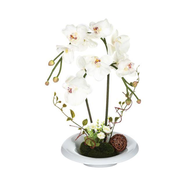 Atmosphera, Createur D'INTERIE Atmosphera - Composition orchidée en vase H46