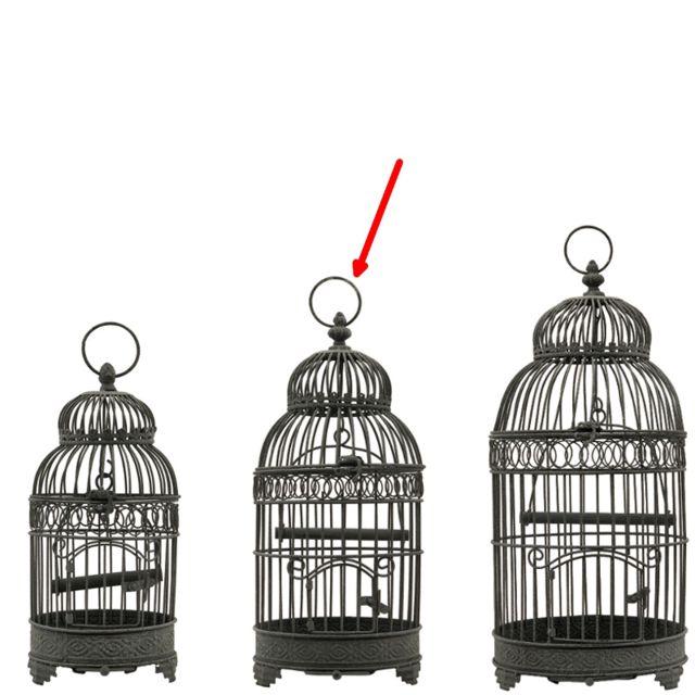 L'ORIGINALE Deco Cage à Oiseaux Ronde Gris 48 cm x ø21 cm