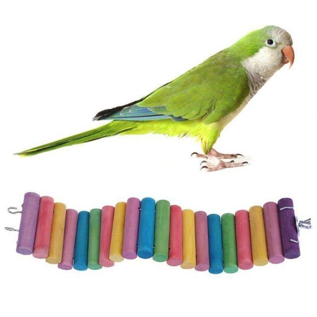 Wewoo Jouet pour 3 Pcs perroquet hamster couleur rond en bois petite échelle route jouettaille 50cm