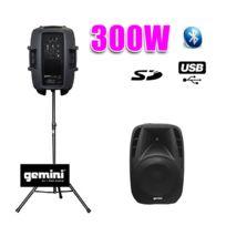 """Gemini - Enceinte amplifiée Boomer 8"""" 300W Usb Sd Bt + pied"""